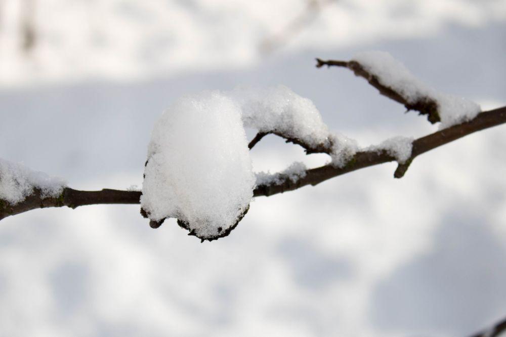 winter-3915878_1920.jpg
